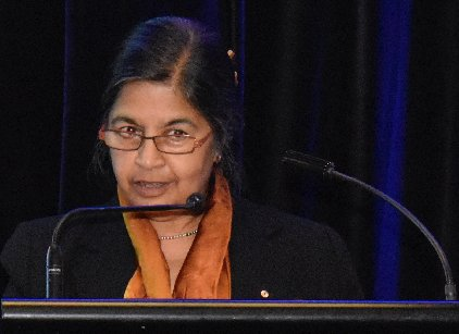 Nalini Joshi delivers the vote of thanks for the Distinguished Fellow's address